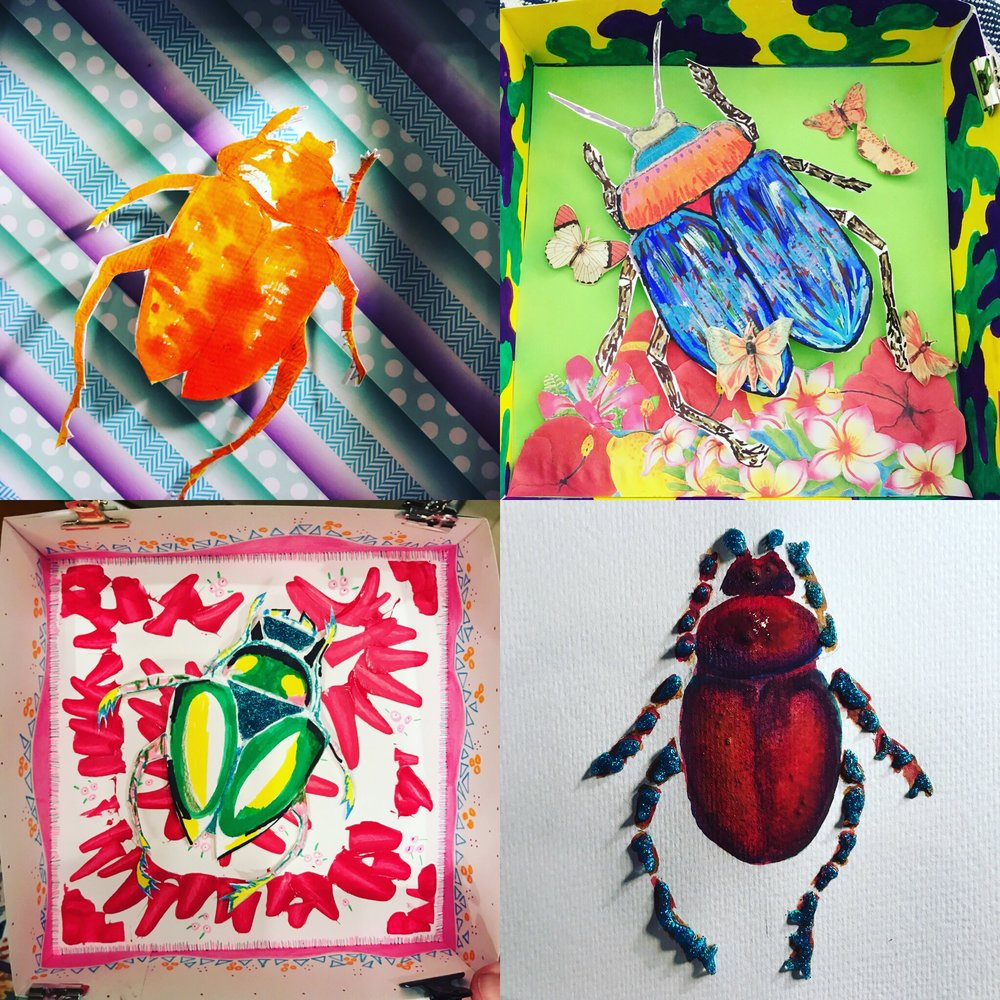 Beetle Shadowboxes -
