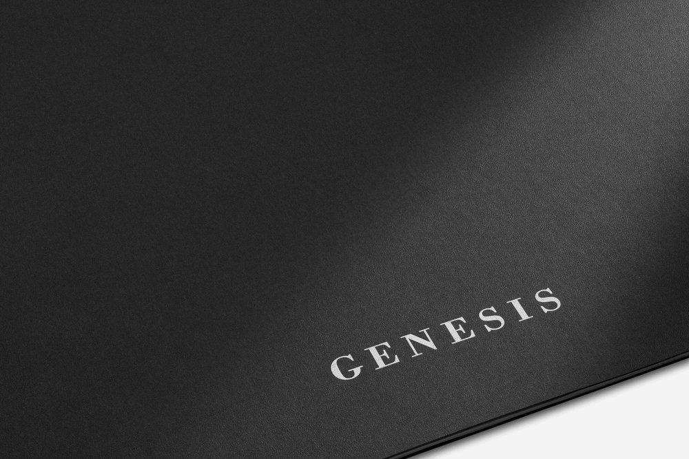 Genesis__FINAL copy.jpg