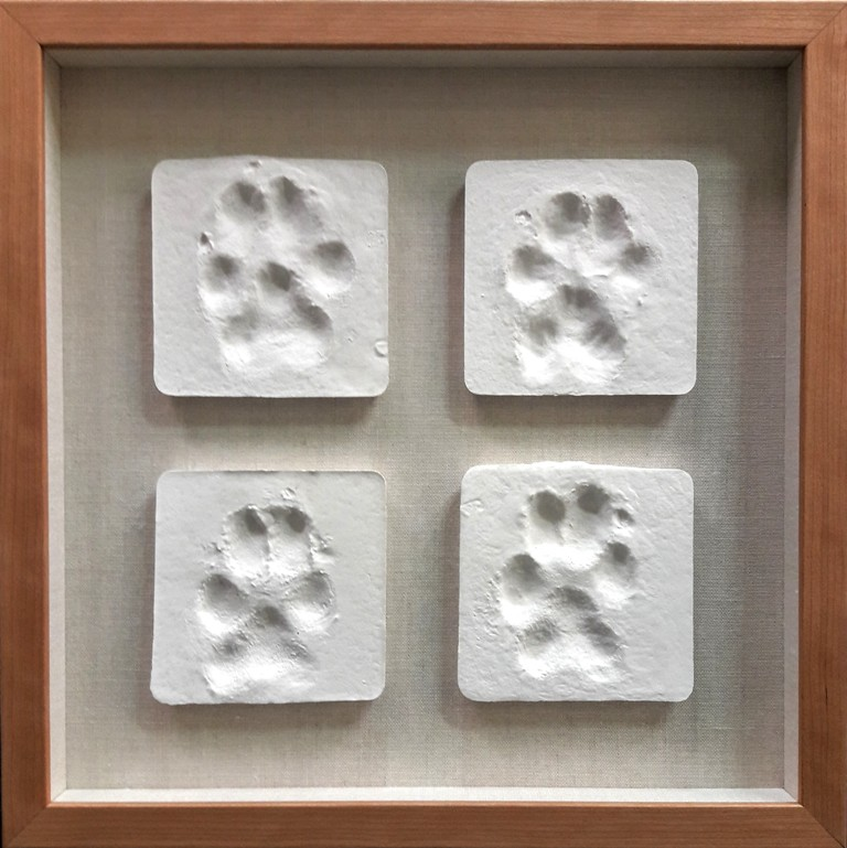 Framed Memorial to a Special Pet - Plaster paw-prints in a shadowbox design on neutral linen create a special memorial to a dear pet. The frame color was chosen to reflect the dog's coat. We're honored when our clients bring projects like this to frame.