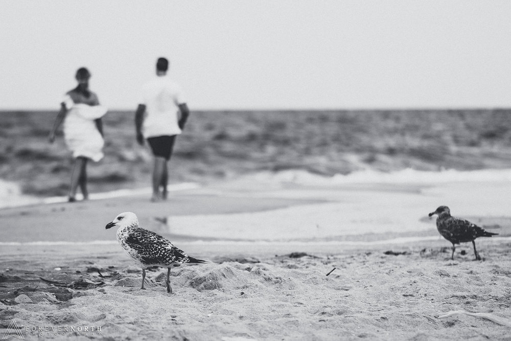 Fattizzi-Point-Pleasant-Beach-Engagement-Photos-07.jpg