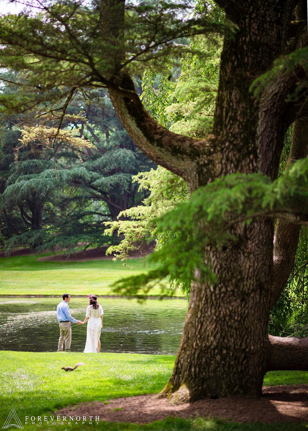 Longwood-Gardens-Engagement-Photos-02.JPG