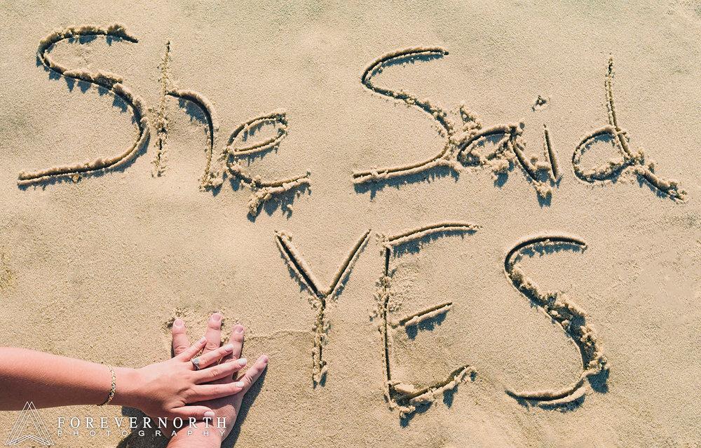 Chiaia-Island-Beach-State-Park-Engagement-Photos-07.JPG