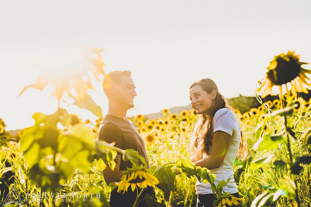 Ennis-Sussex-Sunflower-Maze-Engagement-Photos-04.JPG