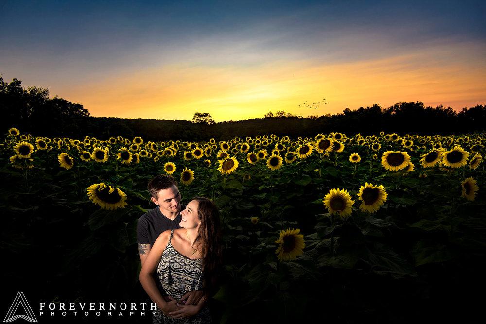Ennis-Sussex-Sunflower-Maze-Engagement-Photos-13.JPG