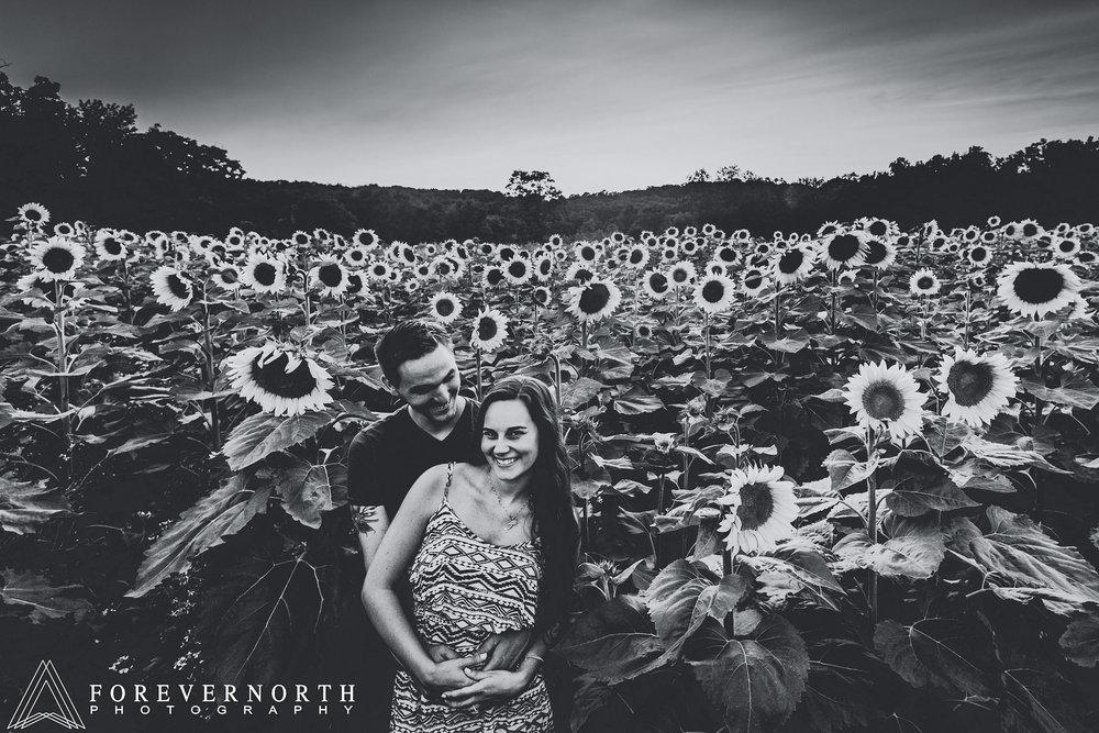 Ennis-Sussex-Sunflower-Maze-Engagement-Photos-14.JPG