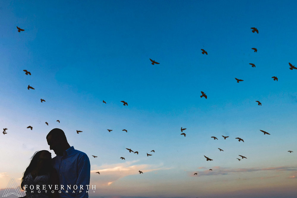A flock of birds fly by the couple at Riverside gardens park in Red Bank new jersey during their engagement shoot.
