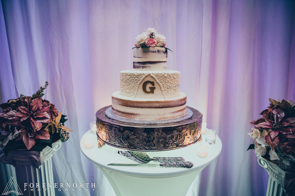 Giangrande-Ramada-Inn-Wedding-Photographer-30.JPG