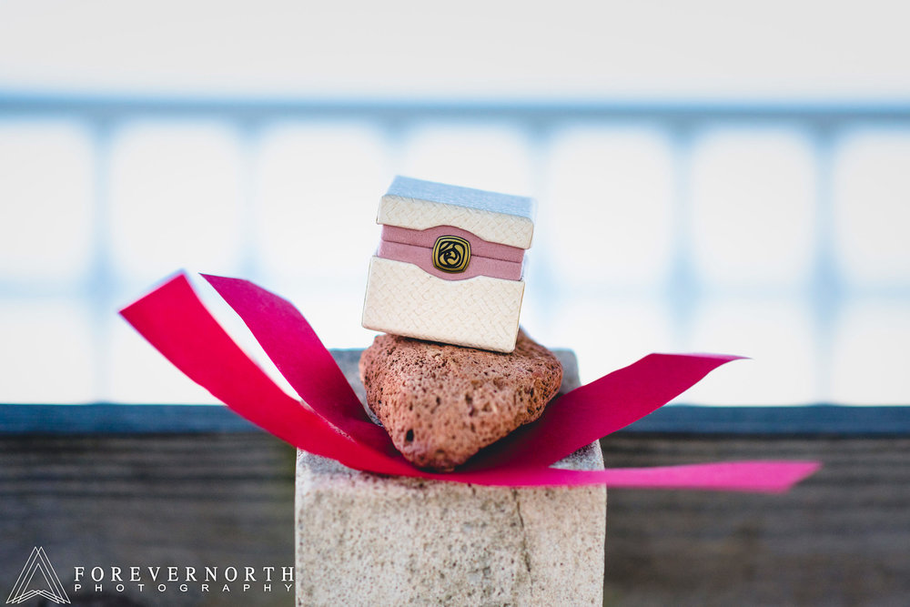 Schall-Forever-North-Photography-Proposal-Engagement-Photographer-Manasquan-Beach-14.JPG