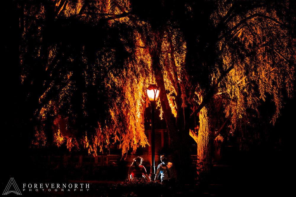 Sanchez-Long-Island-City-Engagement-Photographer-18.JPG
