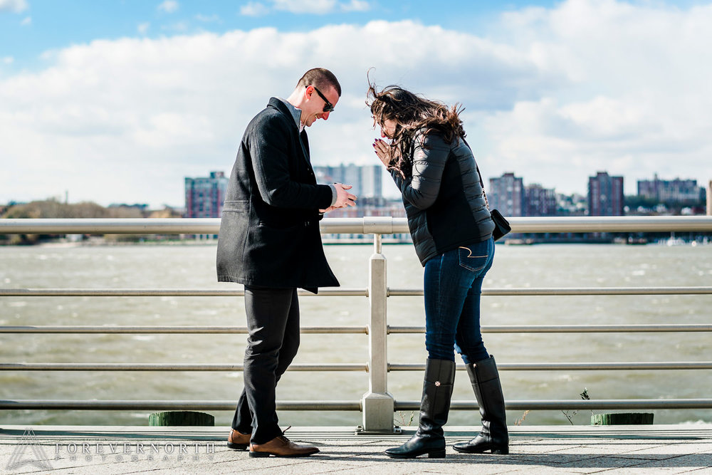 Cainero-Hudson-River-Park-Pier-62-New-York-Proposal-Engagement-Photographer-21.JPG