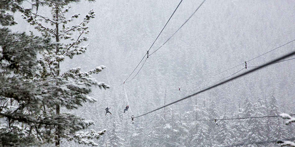 Whistler-Snow.png