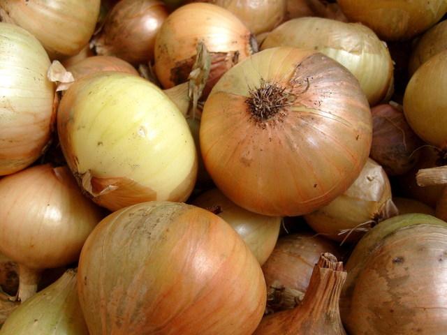 - Onions