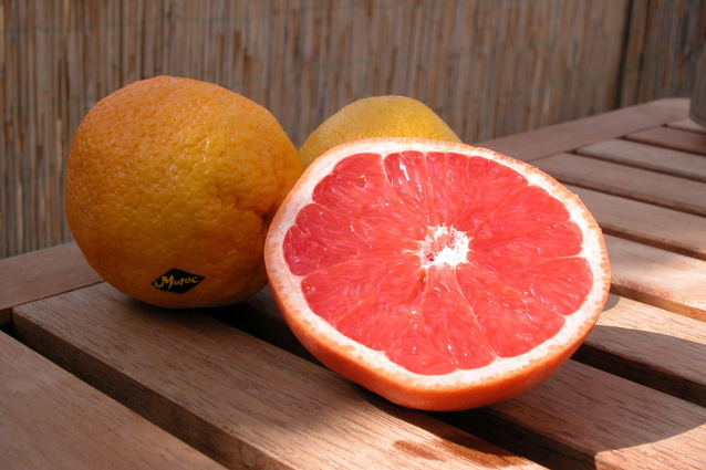 - grapefruit