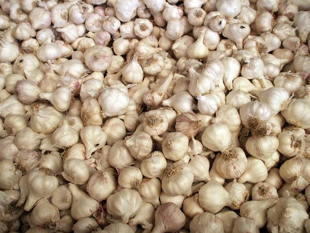 - garlic