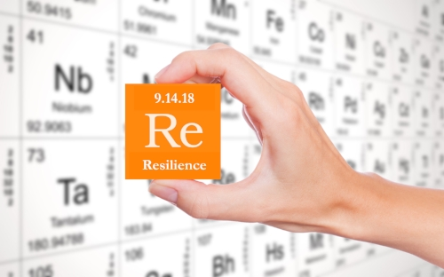 resilience element.jpeg