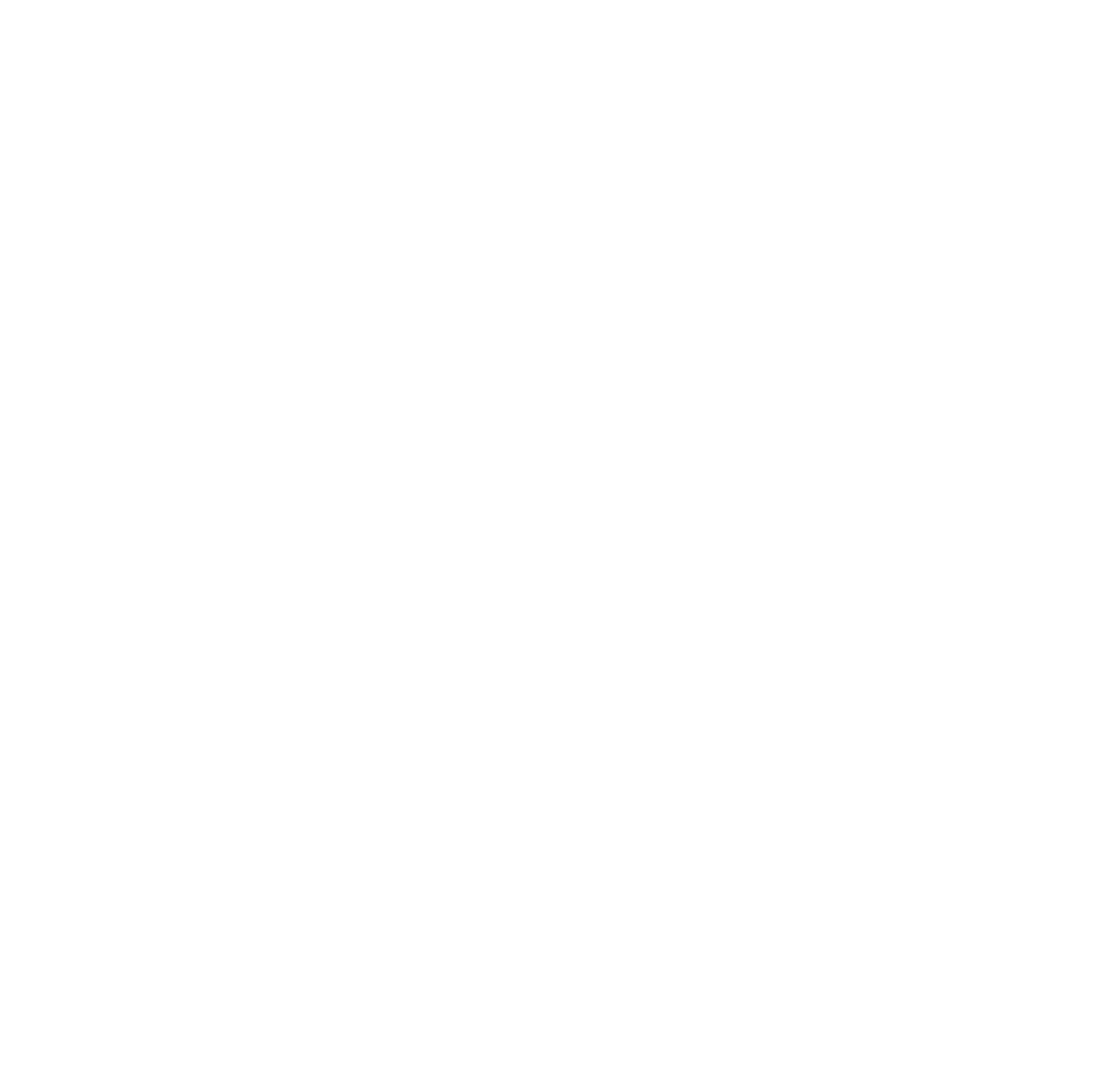 .birches Journal