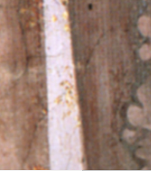 Detail from  The Birth of St John the Baptist