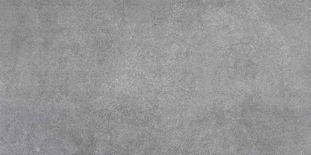 RO01W31356_LIVERMORE GREY 60X120.png