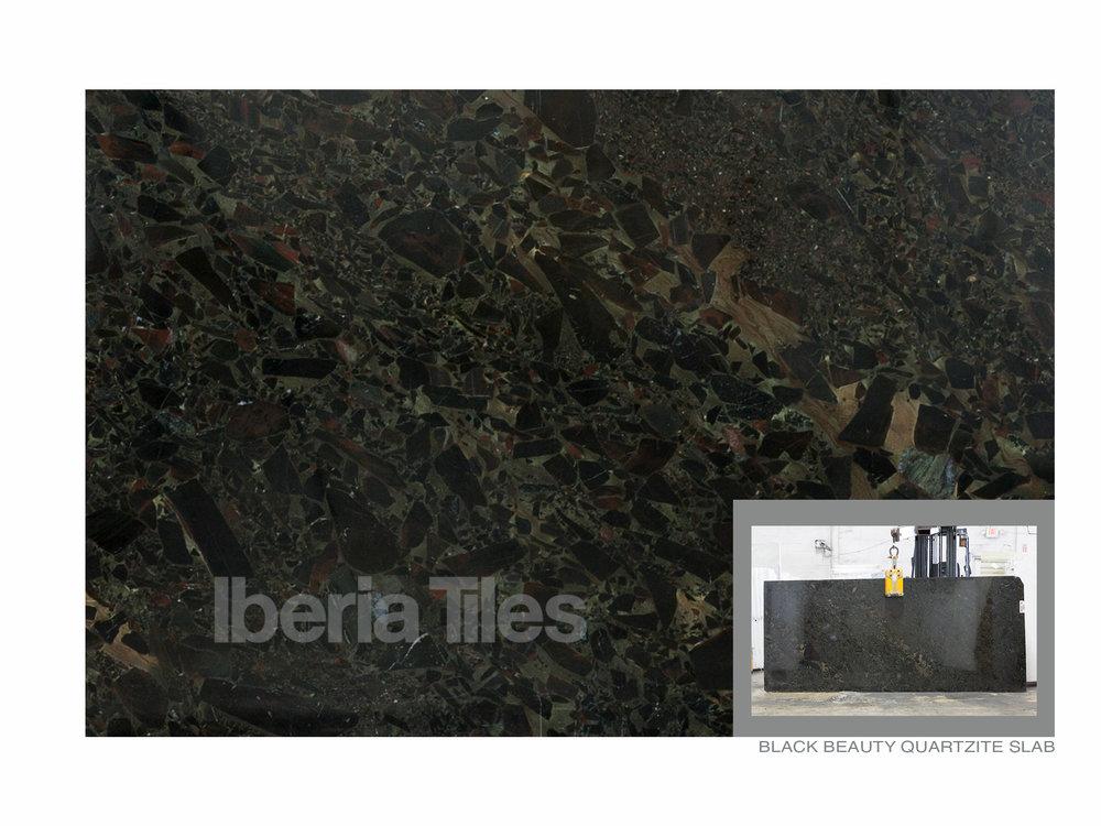 Black Beauty Quartzite.jpg