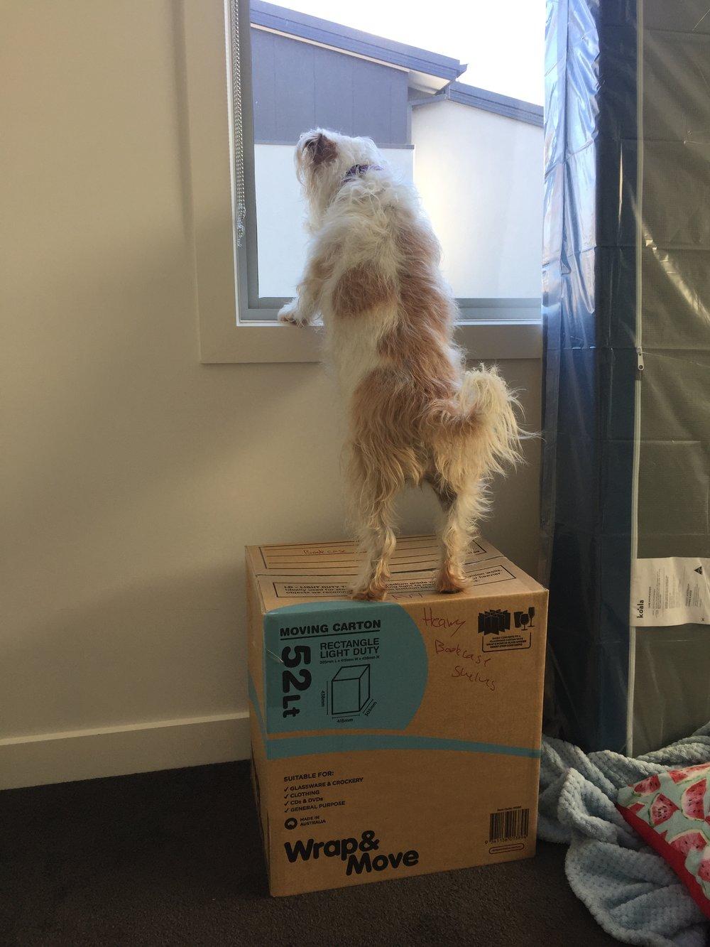 Moving supervisor.