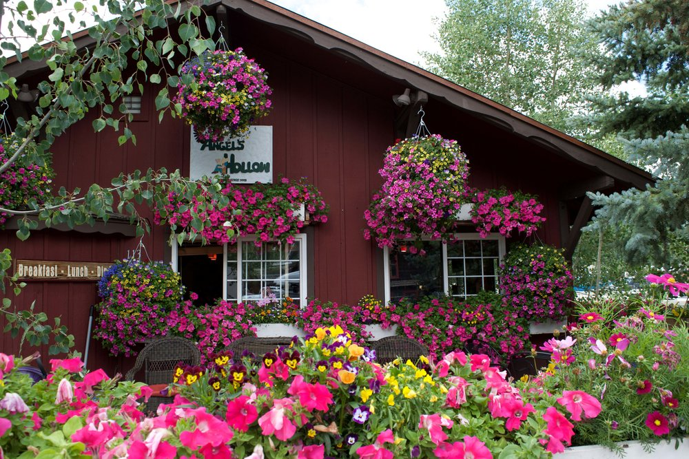 Breckenridge is an explosion of floral colour in the summer months.