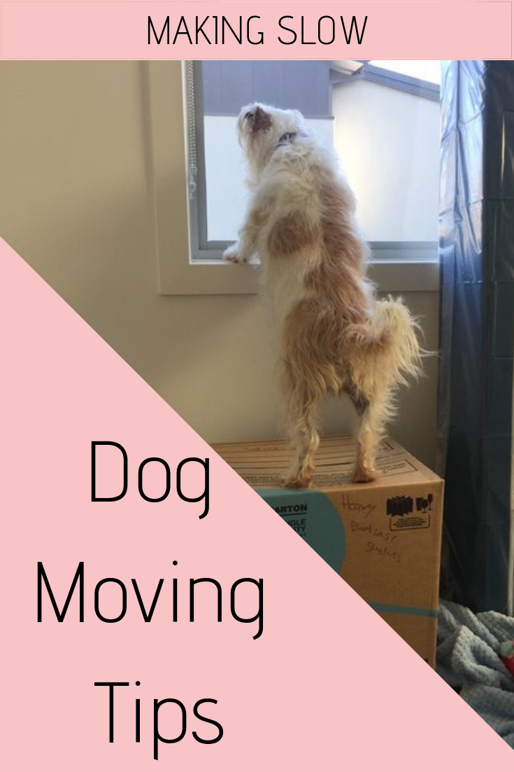 Moving can be stressful for dogs! Here are a bunch of tips to make the transition smoother.