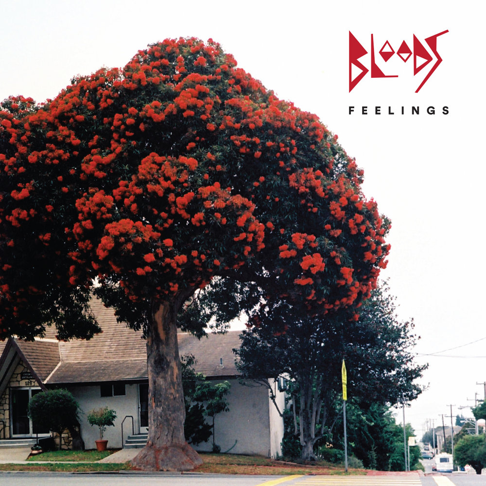 Bloods  -   Feelings    -  SIM-001 - August 17, 2018 (CD / LP August 31, 2018)