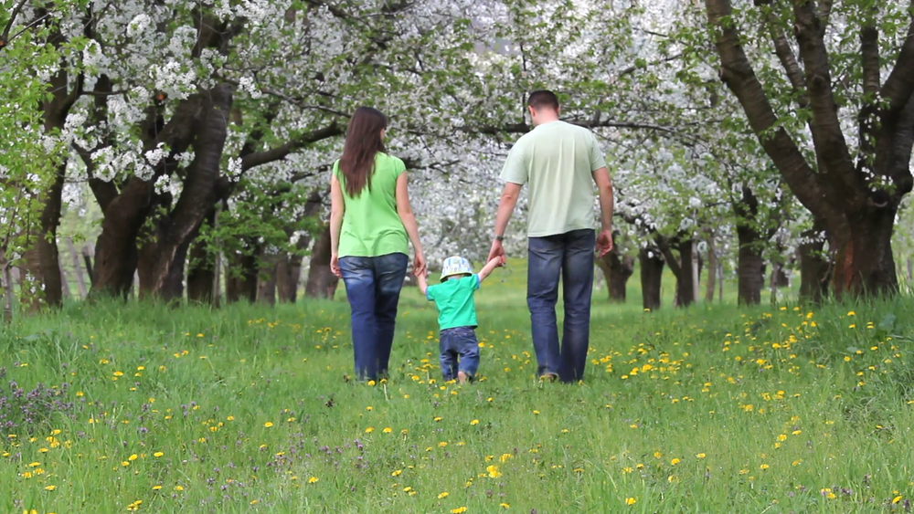 parents-holding-baby-on-his-hands-walking-together-on-blossom-orchard-alley_4_z44rxiox__F0000.png