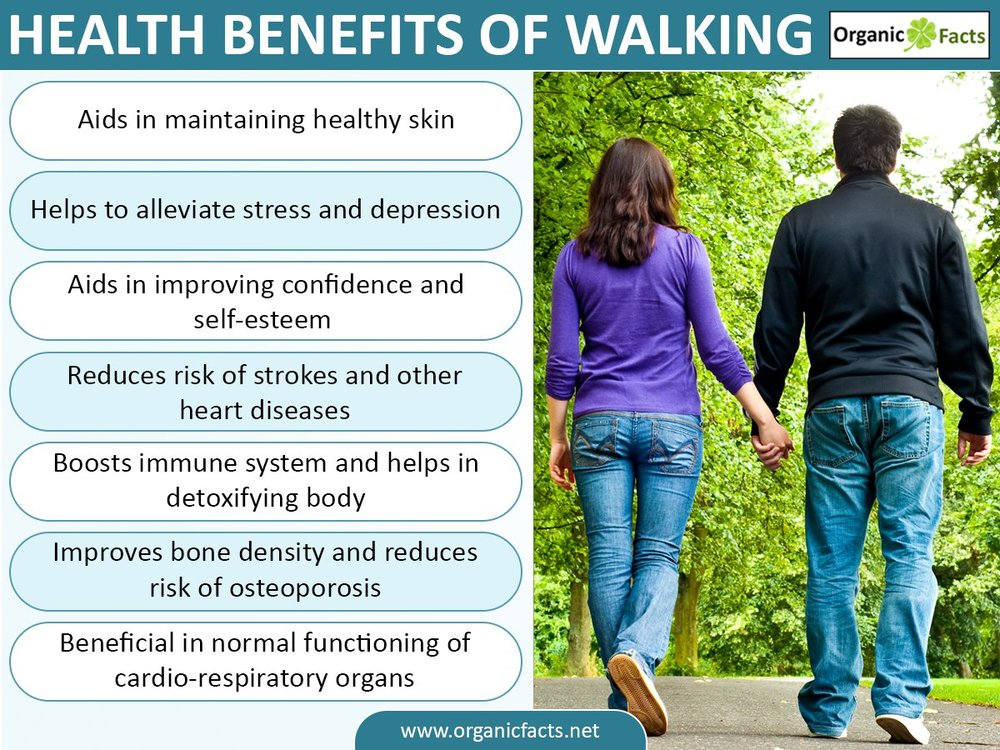 Read more at OrganicFacts https://www.organicfacts.net/health-benefits/other/health-benefits-of-walking.html