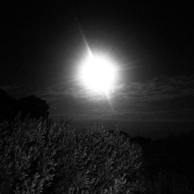 Big moon in Walkerville.