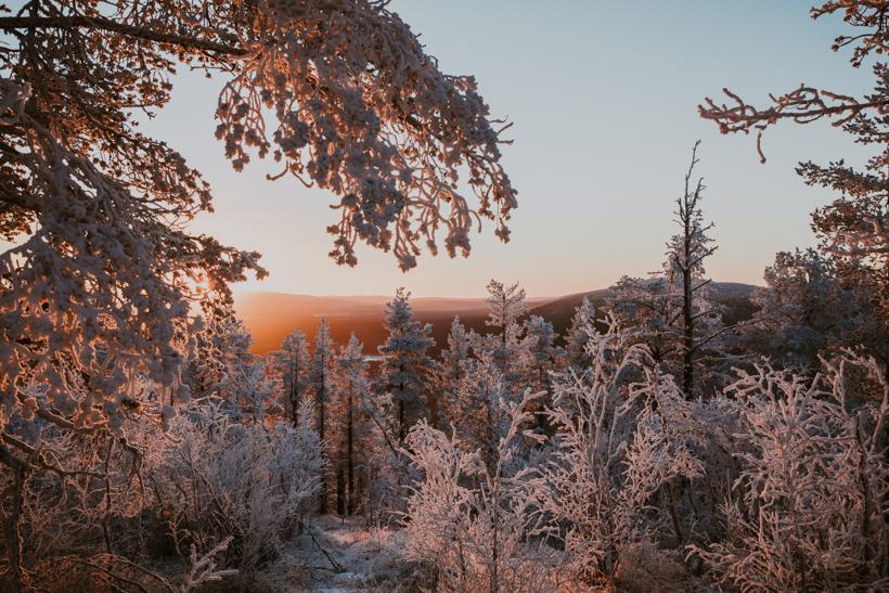 Luonto13.jpg