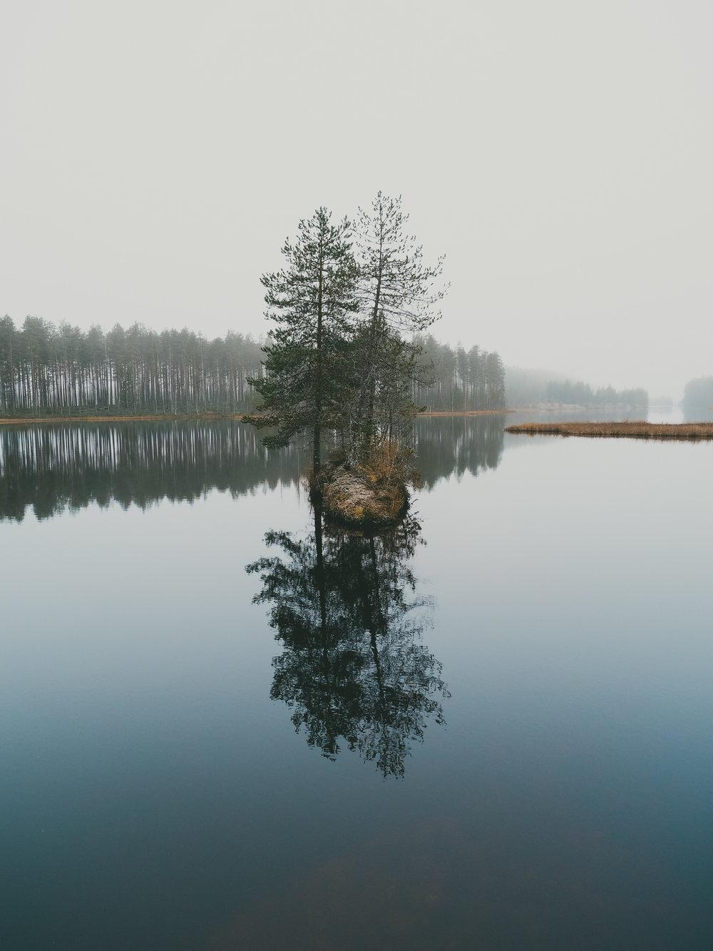 Luonto21.jpg