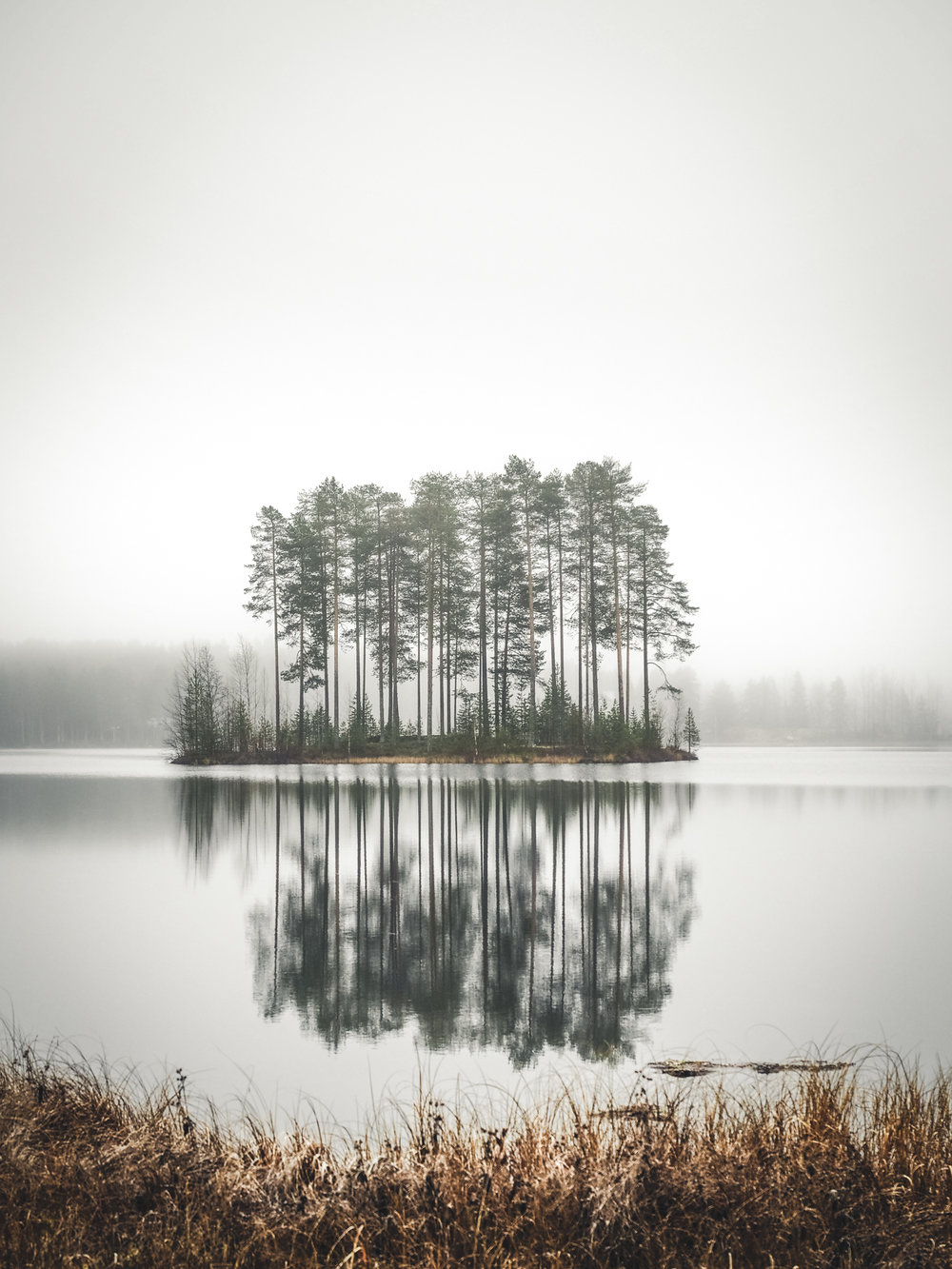 Luonto22.jpg