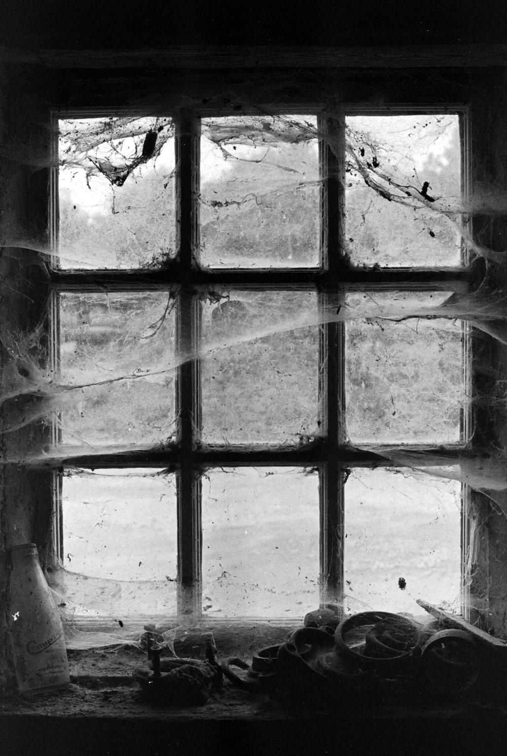 Window (BEFORE).jpg