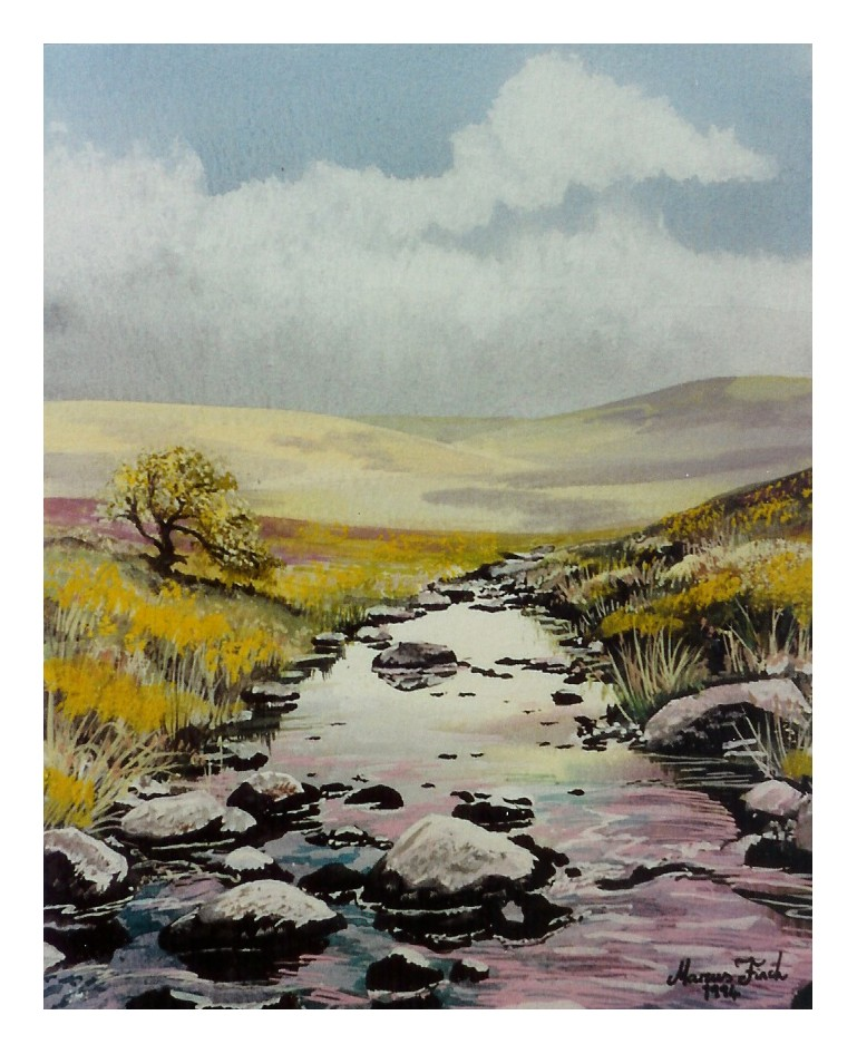 Dartmoor stream dev .jpg