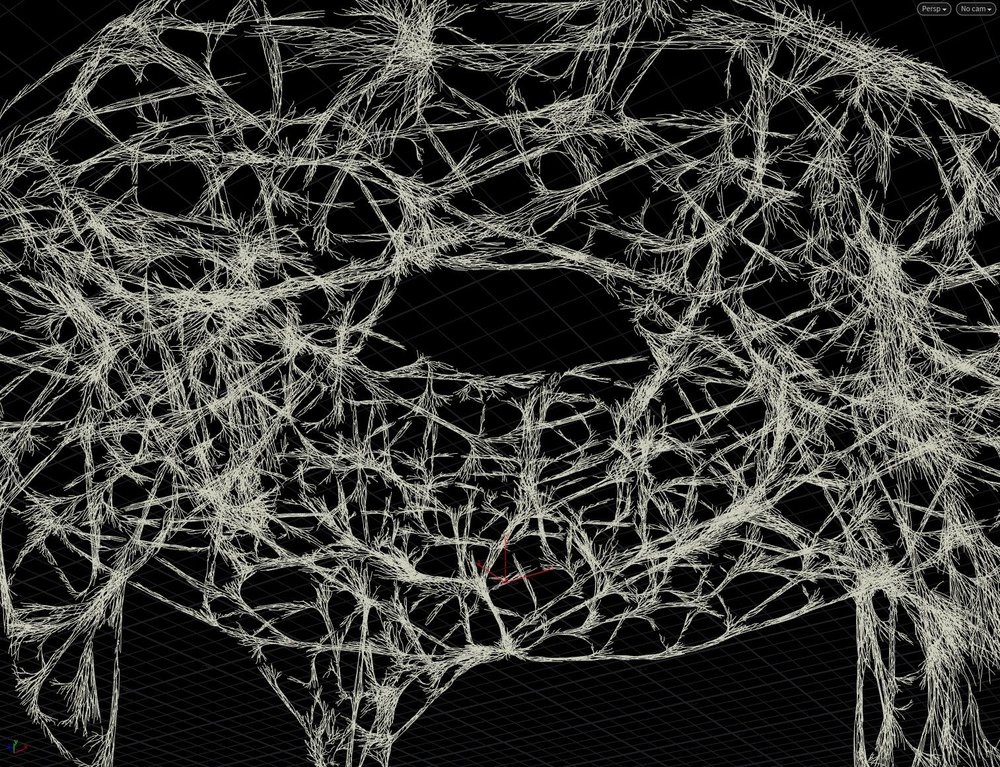Our final structure created by Fred tretou in Houdini