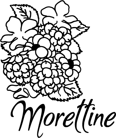 morettine-logo.png