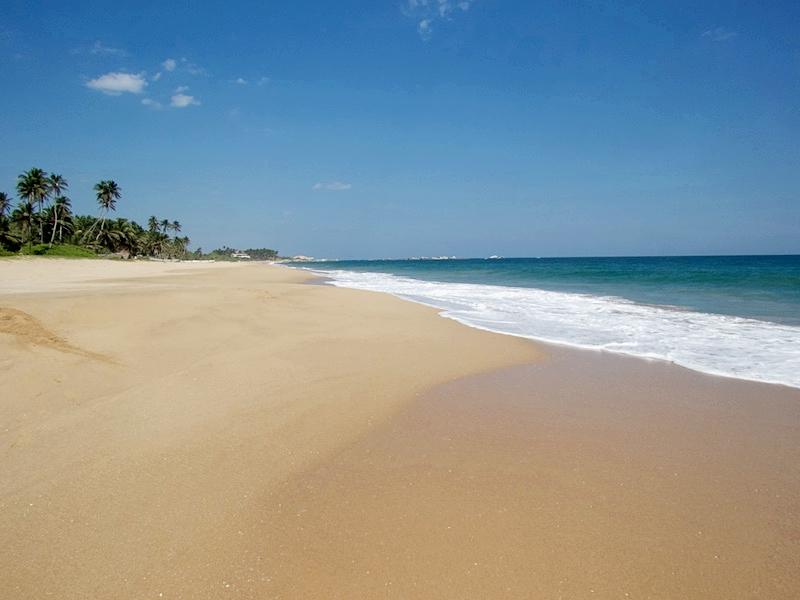 Mamboz-Beach.jpg