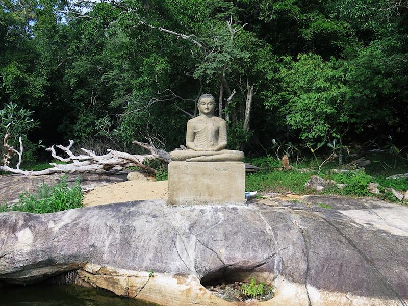 Galgiriyawa-Saliygama-Aranya-3.jpg