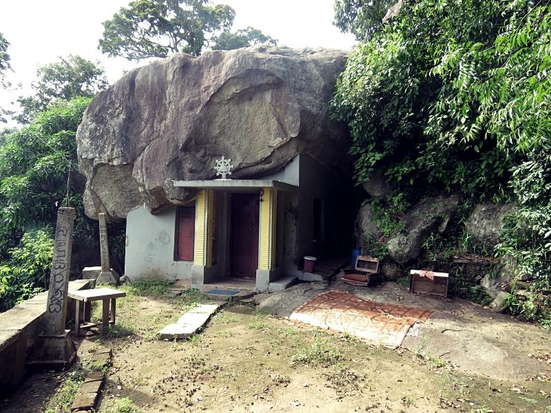 Up at Saliygama Aranya