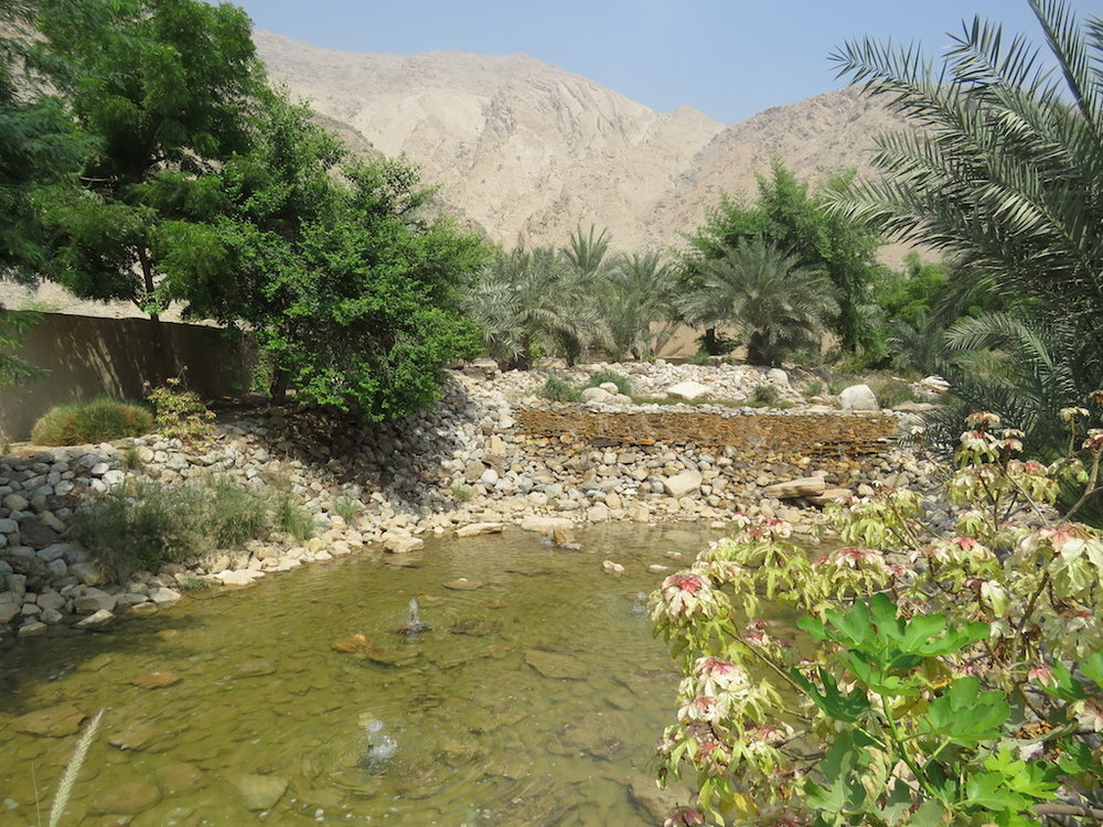 One of the wadis