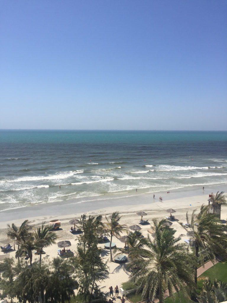 The ocean view