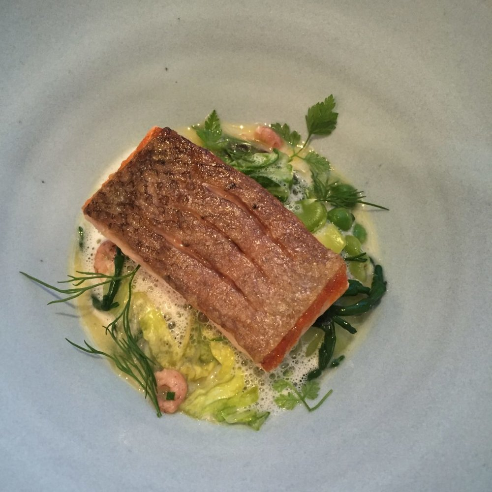 Organic Scottish Salmon With Cucumber, Brown Shrimps, Peas, Garlic & Rosemary Velouté