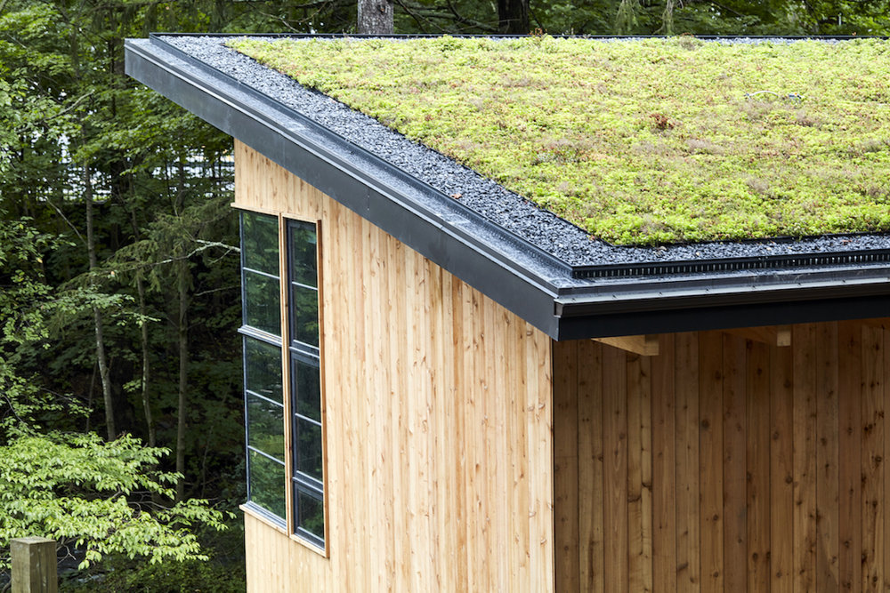 What a living roof system looks like  (photo supplied)