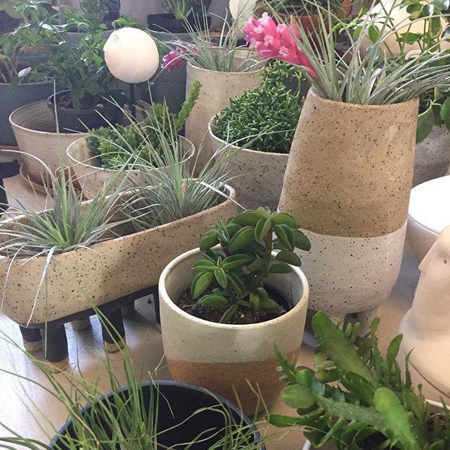 New pots @theplantsocietyau today! Woot!  #luckyanna #plants #handmade #melbournemade #leggypots #ceramics #pottery #buylocal