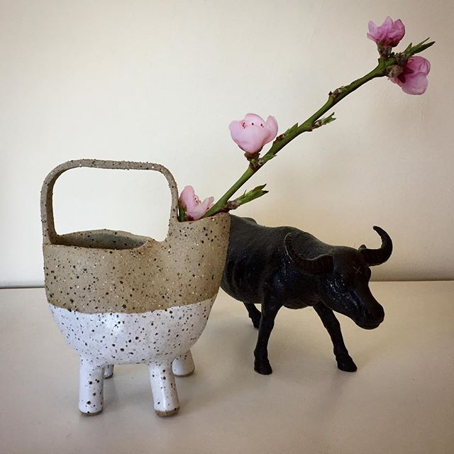 Spring!!!! #luckyanna #leggypot #handmade #handbuilding #pottery #melbournemade