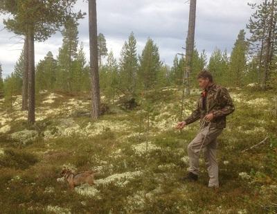 Foto: Odd Sømåen ID:470