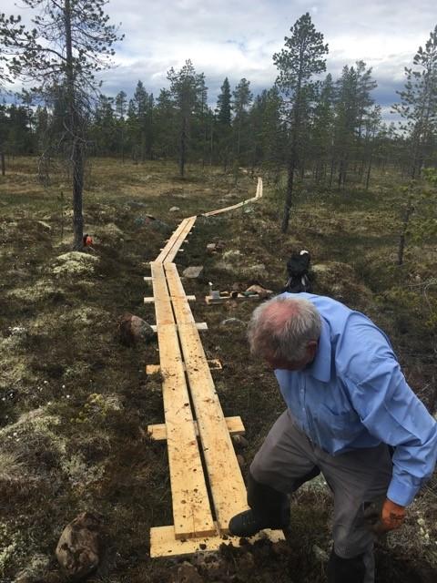 Foto: Knut Eggen - Anders Haugen i arbeid på myra vest for Torbumyra ID:408
