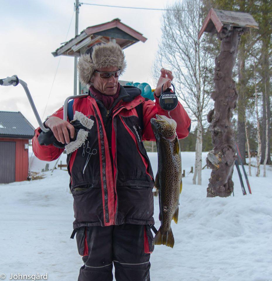 Foto: Johnsgård/Snorre Grønnæs ID:62
