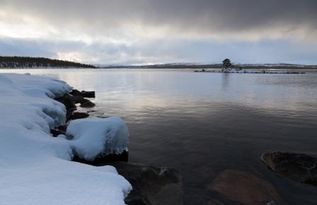 Foto: Jan Nordvålen.